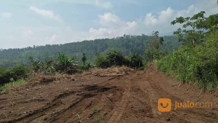 Tanah Kavling Siap Bangun Dan Rumah Tanpa Bunga Kota Batu (22802203) di Kota Batu