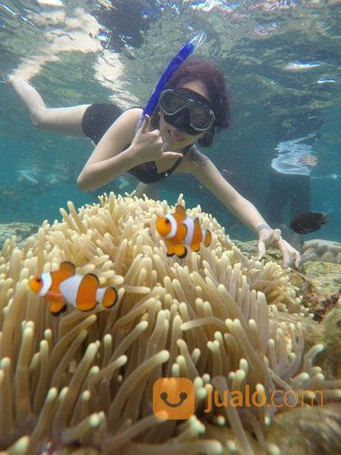 Open Trip Pulau Pahawang Lampung 3 Hari 2 Malam 2020 (23065835) di Kab. Pesawaran
