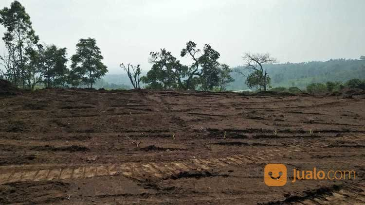 Tanah Lokasi Mewah Kota Batu MALANG JATIM (23081275) di Kota Batu