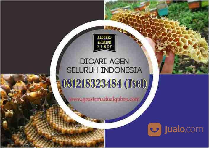 Produsen Madu Asli Murni Al Qubro Premium, (23489551) di Kota Surabaya
