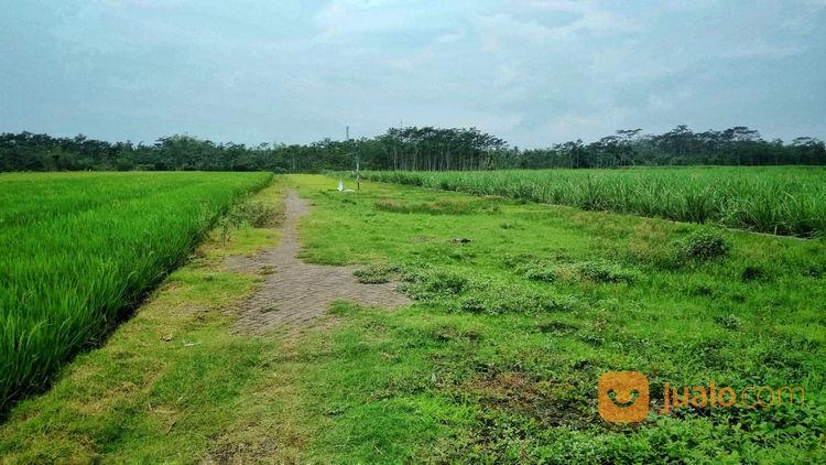 Baru Tanah Kavling DP Hanya 5 Juta Kredet 3 Tahun (23555443) di Kota Malang