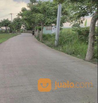 Tanah Utk Bangun Perumahan Di Cibitung Bekasi Lokasi Strategis (23569847) di Kab. Bekasi