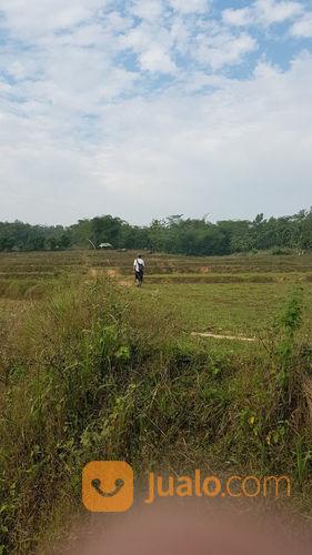Tanah darat akses mu tanah dijual 23697851