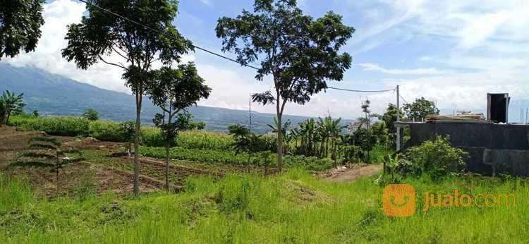 Tanah Kavling Tanpa Bunga (Tanpa Bank) Kota Batu Malang (23836459) di Kota Batu