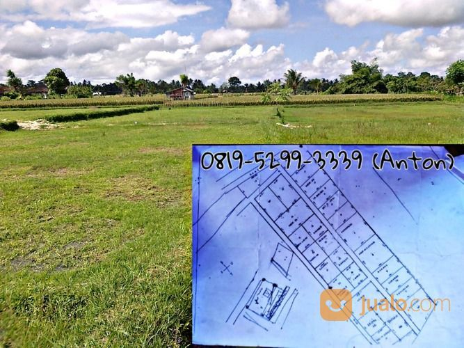 Tanah Kavling Termurah Tanah Murah Lokasi Dekat Dengan Tempat Wisata Waterboom Cocok Untuk Rumah KPR (26034111) di Kab. Barito Kuala