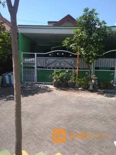 Rumah Second Murah Siap Huni 2 Lantai Sekar Gading Sekardangan Sidoarjo (26275683) di Kab. Sidoarjo