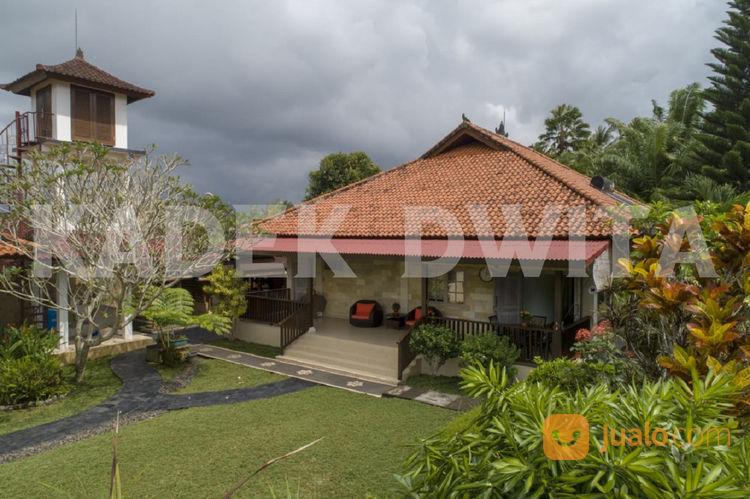 Villa Full View Sawah Pejeng Ubud Bali Kab Gianyar Jualo