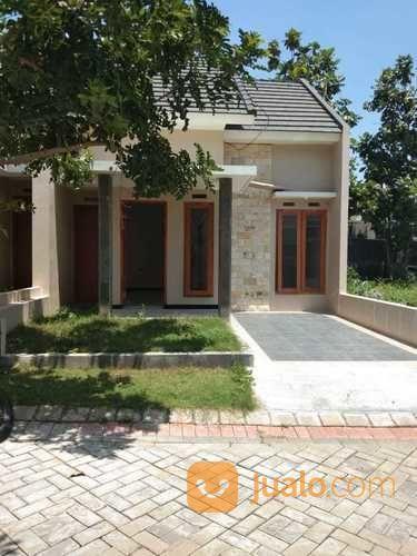 Rumah Siap Huni Bagus Dan Murah Di Blimbing Malang (26483015) di Kota Malang