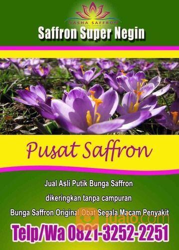 Manfaat Saffron Nasha Kering (26589567) di Kota Bogor