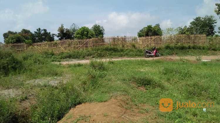 Tanah Kavling Siap Bangun Kota Wisata Batu Malang (Depan Wisata Coban) (26645303) di Kota Batu