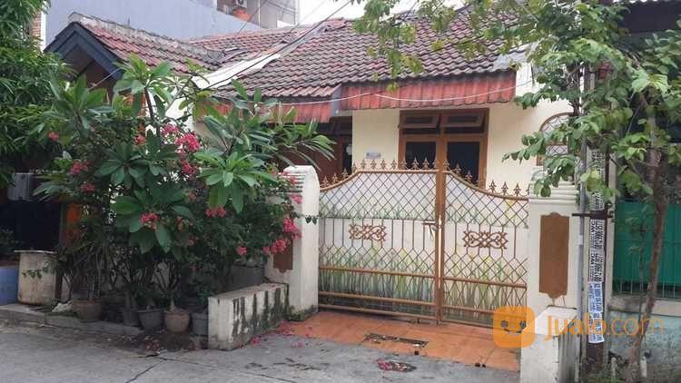 Rumah Minimalis Bersih Di Villa Indah Permai Tidak Banjir (26694039) di Kota Bekasi
