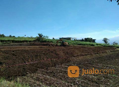 Tanah Kavling Siap Bangun Belakang BNS Kota Batu Malang Free SHM Tanpa Bunga (27321055) di Kota Batu