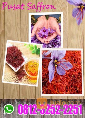 GROSIR !! WA: 0812-3252-22 (Tsel) Harga Bunga Saffron Per Gram Bandung Bogor (27337627) di Kota Bogor