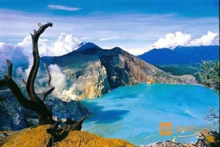 Open Trip Kawah Ijen Baluran Menjangan Dan Tabuhan 2020 : (27407171) di Kab. Karawang