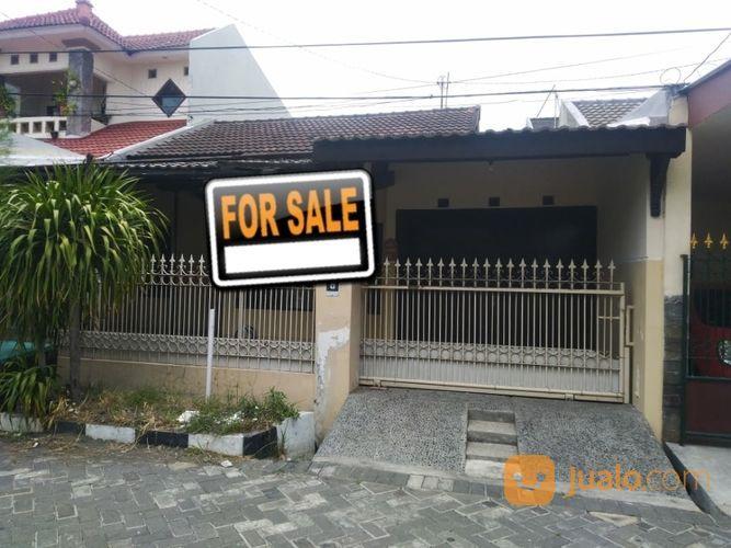 1lantai Rumah STRATEGIS Sutorejo Selatan ROW Jalan 2,5Mobol (27661295) di Kota Surabaya