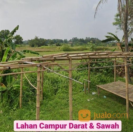 Tanah Serang 23 Ha Dekat Citra Maja Desa Mekar Baru Kab Serang Banten (27926375) di Kab. Serang