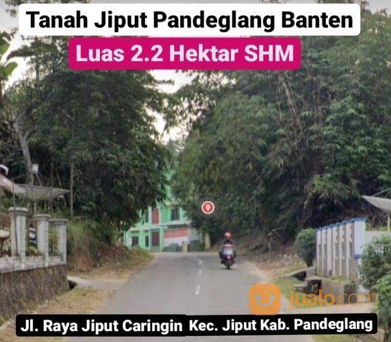 Tanah Pandeglang 2.2 Ha Kec Jiput Kab Pandeglang Prop Banten (27926783) di Kab. Pandeglang