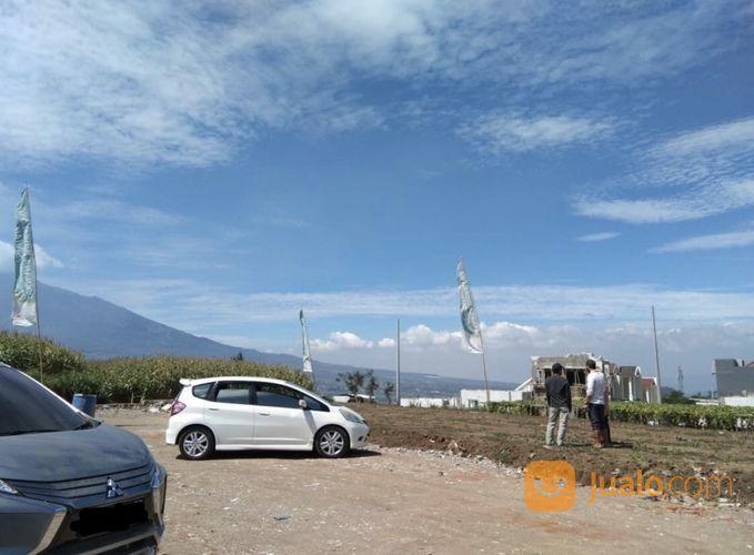 Tanah Kavling Dan Perumahan Belakang Wisata BNS Kota Batu Malang (Free SHM Dan Tanpa Bunga) (27954303) di Kota Batu