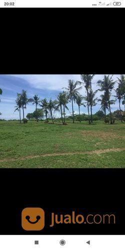 Tanah Los Pantai Jembrana Bali (28117155) di Kab. Jembrana