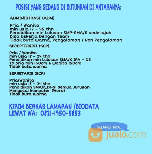 Lowongan Staff Admin Lulusan Sma Smk Jakarta 2020 Jakarta Selatan Jualo