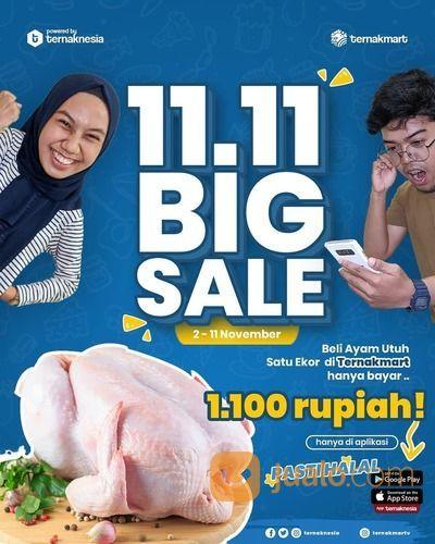 Ternak Mart 11.11 BIG SALE Beli ayam hanya Rp 1.100* (28703403) di Kota Surabaya