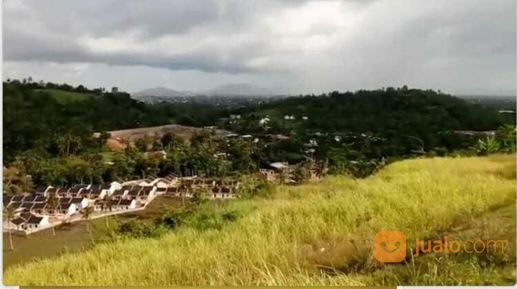 Tanah Bukit 2,5 Hektar (28985542) di Kab. Lombok Barat