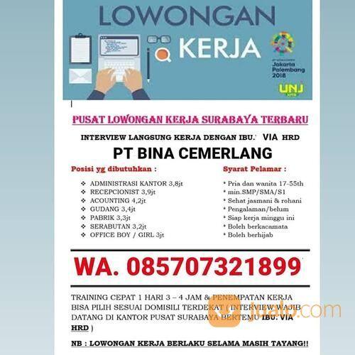 Loker Admin Surabaya Surabaya Jualo