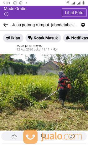 Jasa Potong Rumput Serang (29360700) di Kota Serang