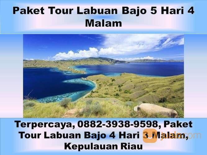 Murah, 0882-3938-9598, Paket Tour Labuan Bajo Dari Bali, Daerah Istimewa Yogyakarta (29447571) di Kota Semarang