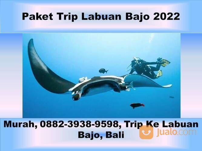 Terjangkau, 0882-3938-9598, Paket Wisata Labuan Bajo Dari Jogja, Jawa Barat (29453740) di Kota Semarang