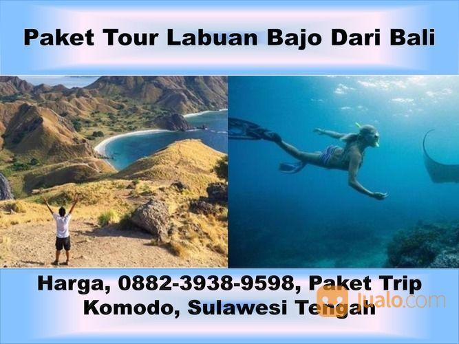 Murah, 0882-3938-9598, Paket Tour Di Labuan Bajo, Sumatera Barat (29487454) di Kota Semarang