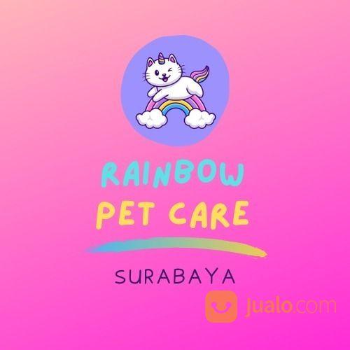 Jasa Grooming Hewan (Kucing Anjing Kelinci) Kerumah SURABAYA Dan Sekitarnya Terbaik (29579597) di Kota Surabaya
