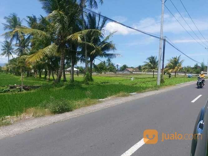 Tanah Di Pinggir Jalan Raya Gora Lingsar (29793813) di Kab. Lombok Barat