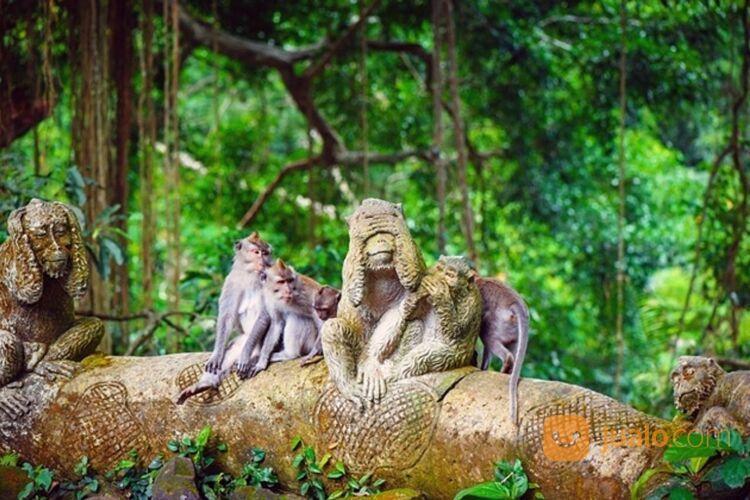 PAKET TOUR UBUD MURAH - TEGALALANG (30042250) di Kab. Badung