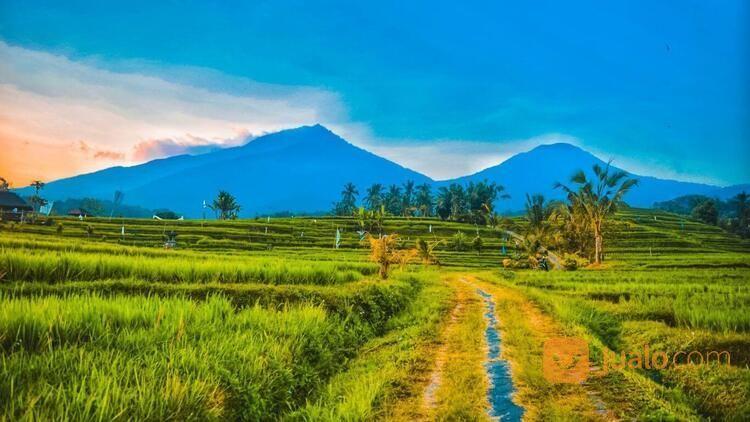 PAKET TOUR AIR TERJUN BANYUMALA - WANAGIRI - BALI (30051474) di Kab. Badung