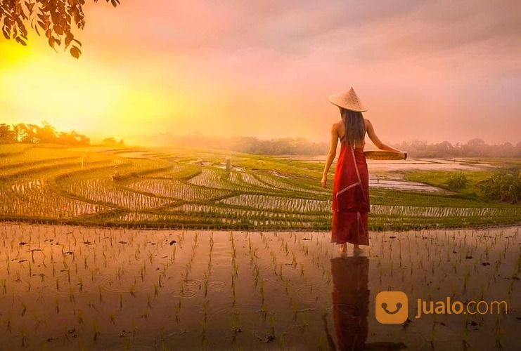 PRIVATE TOUR HARIAN BALI - PURA ULUN DANU (30051572) di Kab. Badung