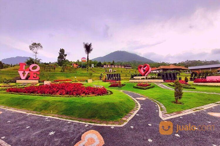 PRIVATE TOUR HARIAN BALI - PURA ULUN DANU (30051574) di Kab. Badung