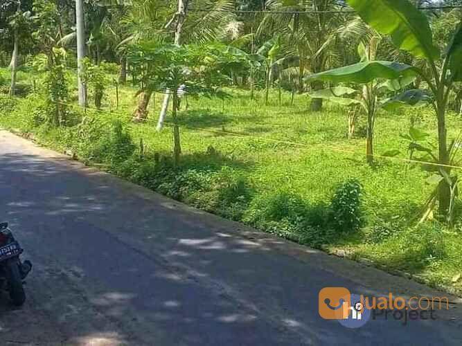 Tanah Kavling Lombok Barat Di Langko Lingsar T548 (30309759) di Kab. Lombok Barat