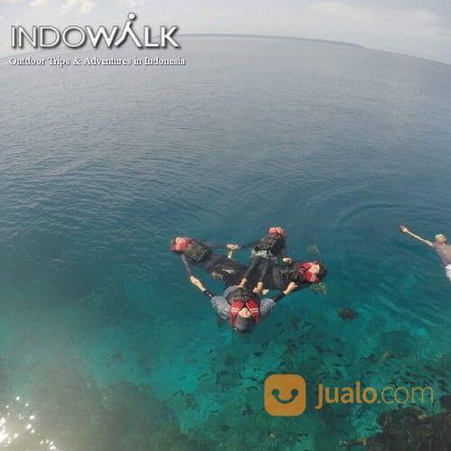Travel Pulau Derawan Indowalk (30391496) di Kab. Berau