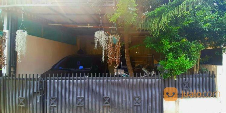 Rumah Di Pabuaran Cibinong (30805136) di Kab. Bogor