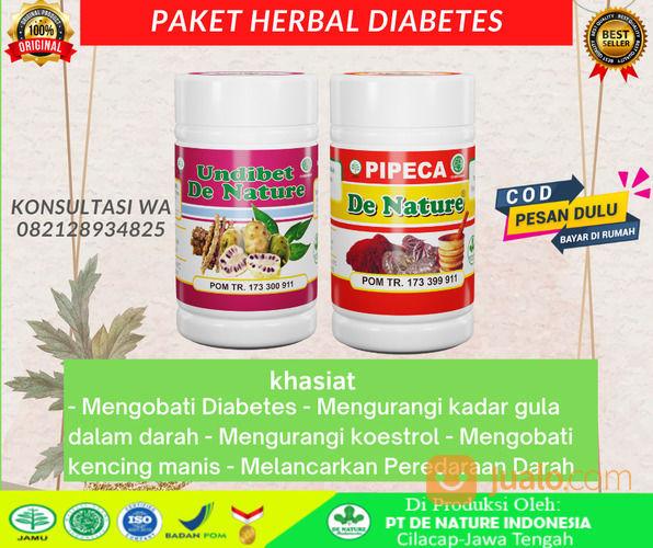 Obat Diabetes Penyakit Gula Herbal De Nature Paling Ampuh Sangat Terbukti Khasiatnya ORIGINAL (30933231) di Kab. Bangka Tengah