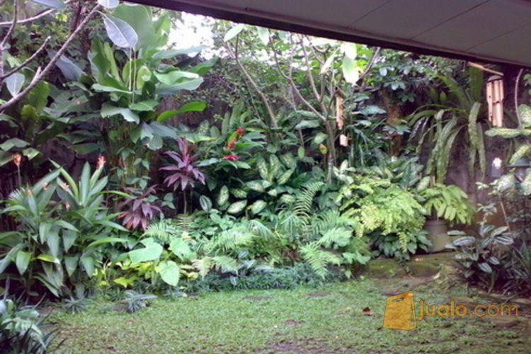Rumah Di Pesanggrahan M Saidi Jakarta Selatan (3531291) di Kota Jakarta Selatan