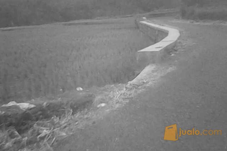 Tanah Sawah Luas 2 Hektar di Cianjur, Jawa Barat AG395 (3697241) di Kab. Cianjur