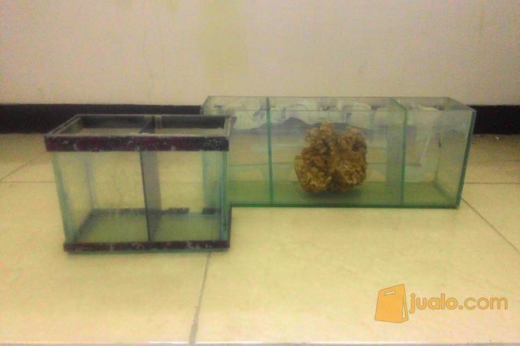 Aquarium Akuarium Kaca Ikan Hias Kecil Dengan Sekat Surabaya Jualo