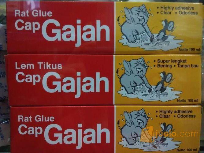 Lem Tikus Odol Cap Gajah Rat Glue Jakarta Barat Jualo