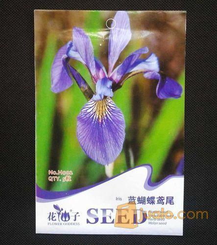 Butterfly iris blue kebutuhan rumah tangga konstruksi dan taman 6570061