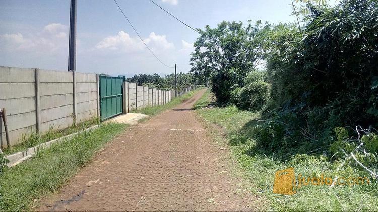 Kavling Rumah Kebun Parung Hijau 1 Bogor (8462501) di Kab. Bogor