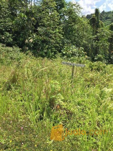 Tanah di gunung cerma properti tanah 8639241