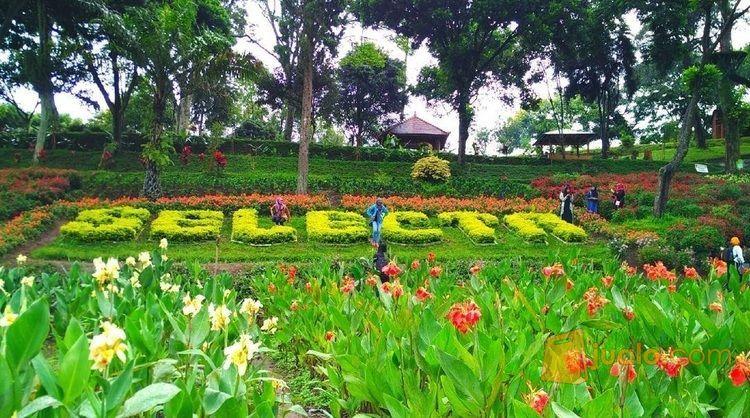 Paket Wisata Selecta (9030767) di Kota Surabaya