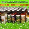 DISKON GILA !! WA : 0813-3211-8791 (Tsel) Grosir Harga Madu Asli Sumbawa Di Malang By MALISSA (28486223) di Kab. Malang